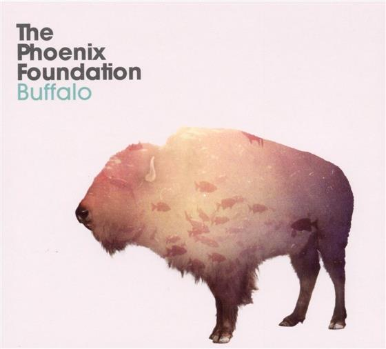 Phoenix Foundation (New Zealand) - Buffalo