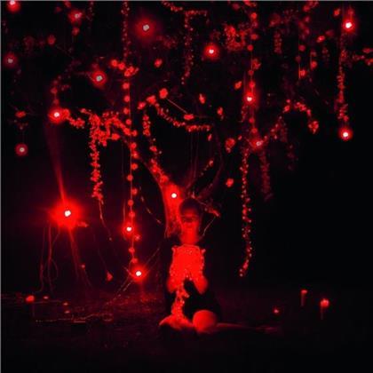 Sophie Hunger - Danger Of Light (Deluxe Edition, 2 CDs)