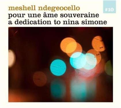 Me'shell Ndegeocello - Pour Une Ame Souveraine
