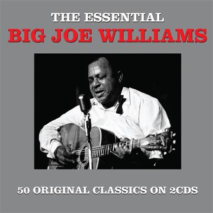 Big Joe Williams - Essential (2 CDs)