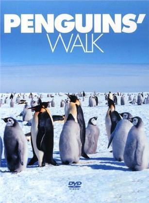 Penguins' walk