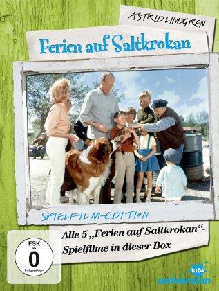 Ferien auf Saltkrokan - Astrid Lindgren (Coffret, Édition Collector, 5 DVD)