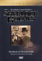 Sherlock Holmes - Incident at Victoria Falls (1992) (Collector's Edition, 2 DVDs)