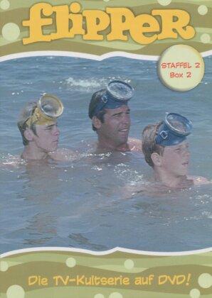 Flipper - Staffel 2, Box 2 (2 DVDs)
