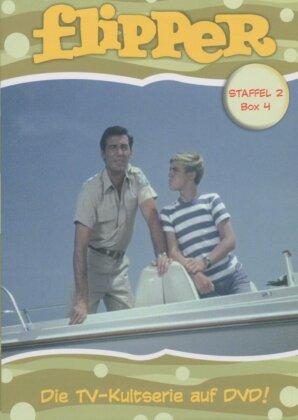 Flipper - Staffel 2, Box 4 (2 DVDs)