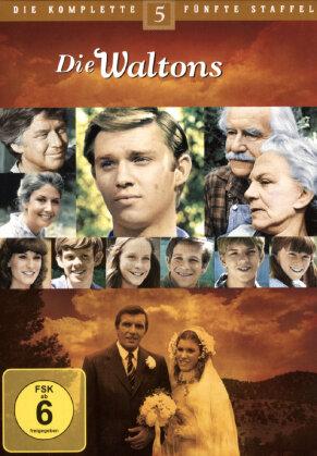 Die Waltons - Staffel 5 (7 DVDs)