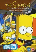 The Simpsons - Season 10 (Collector's Edition, 4 DVD)