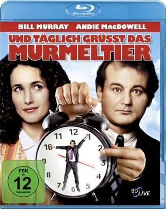 Und täglich grüsst das Murmeltier (1993)