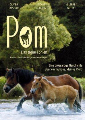 Pom - Das treue Fohlen