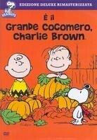Peanuts - E' il Grande Cocomero, Charlie Brown
