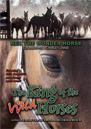 The King of the Wild Horses (Remastered)