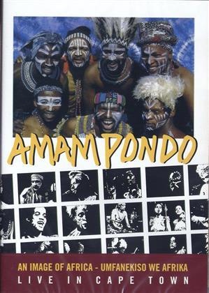 Amampondo - Live in Cape Town