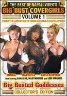 The Best of Napali Video's Big Bust Covergirls - Vol. 1: Big Busted Goddesses (Collector's Edition)
