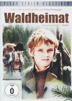 Waldheimat - Staffel 1 (Pidax Serien-Klassiker, 2 DVDs)