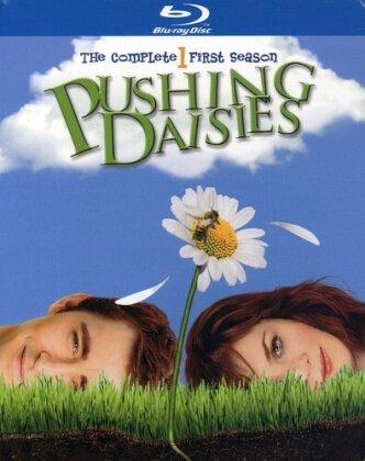 Pushing Daisies - Season 1 (3 Blu-rays)