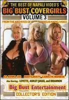 The Best of Napali Video's Big Bust Covergirls - Vol. 3: Big Bust Entertainment (Collector's Edition)