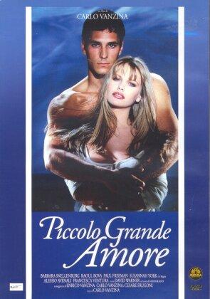 Piccolo grande amore (1993)