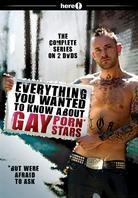 Everything you wanted to know about Gay Porn Stars - The complete Series (2 DVDs)