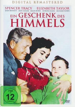 Ein Geschenk des Himmels (1951)
