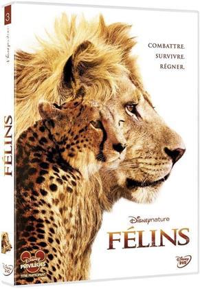 Félins - Le Royaume du Courage (2011)