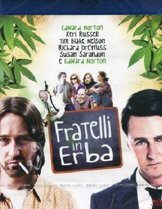 Fratelli in erba (2009)