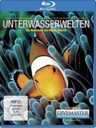Unterwasserwelten - Die Bewohner des Roten Meeres