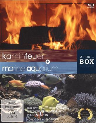 Kaminfeuer / Marine Aquarium (2 Blu-rays)