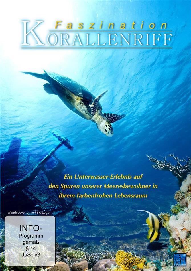 Faszination Korallenriff