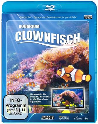 Clownfisch - Aquarium HD