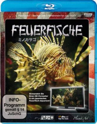 Feuerfische - Aquarium HD