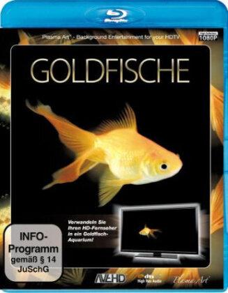 Goldfische - Aquarium HD