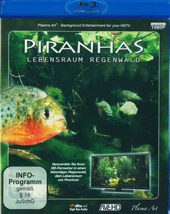 Piranhas - Lebensraum Regenwald HD