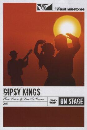 Gipsy Kings - Tierra Gitana & Live In Concert (Visual Milestones)