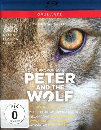 Royal Ballet School, Royal Ballet Sinfonia, … - Prokofiev - Peter und der Wolf (Opus Arte)