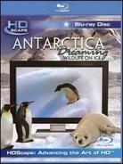Antarctica Dreaming