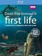 First life (BBC) - L'origine della vita