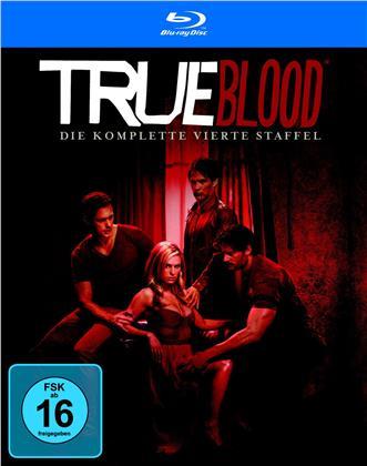 True Blood - Staffel 4 (6 Blu-rays)