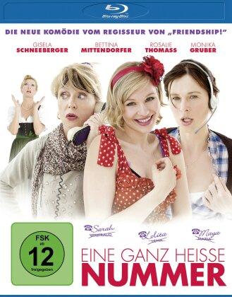 Eine ganz heisse Nummer (2011)