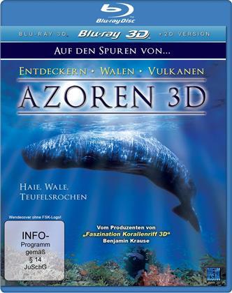 Azoren - Teil 1 - Haie, Wale, Teufelsrochen