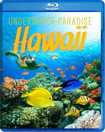 Hawaii - Underwater Paradise