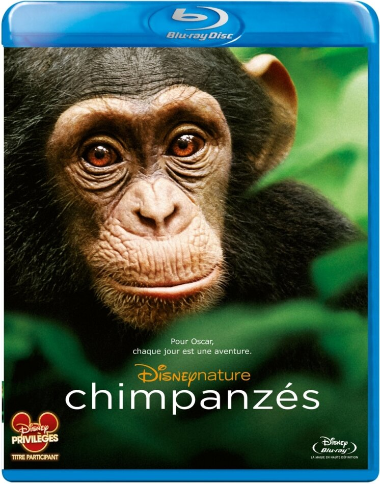 Chimpanzés - Chimpanzee (2012) (2012)
