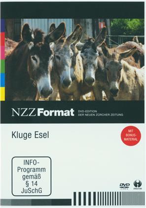 Kluge Esel - NZZ Format