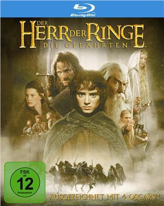 Der Herr der Ringe - Die Gefährten (2001)