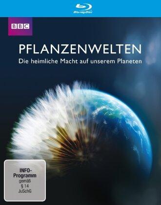 Pflanzenwelten - Die heimliche Macht auf unserem Planeten (BBC)