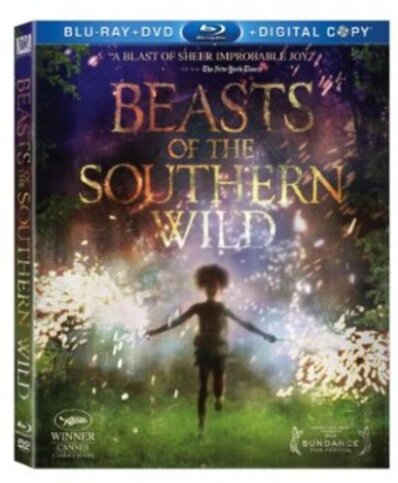 Beasts of the Southern Wild (2012) (Blu-ray + DVD)