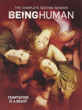 Being Human - Season 2 (2012) (4 DVDs)
