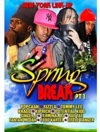 Various Artists - Spring Break 1