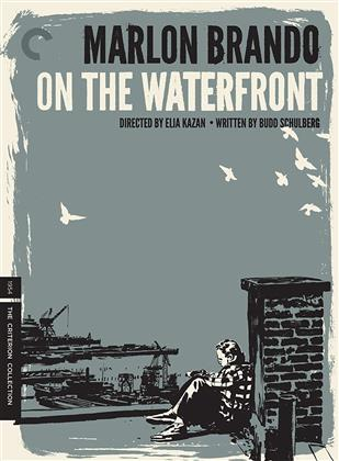 On the Waterfront (1954) (s/w, Criterion Collection, 3 DVDs)