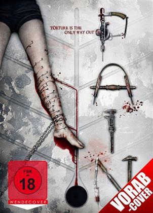 Pain (2011)