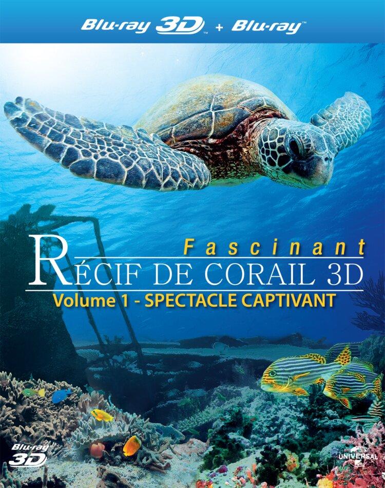 Récif de corail fascinant - Spectacle captivant